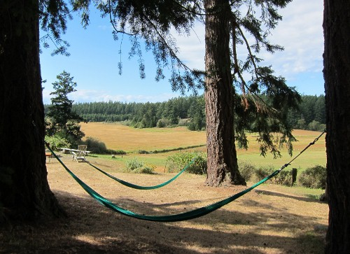 Hammocks at Juniper Lane Guest House