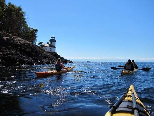 Sea Kayaking along the shore of San Juan Island